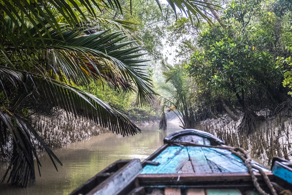 Sundarbans, world's largest mangrove forest in bangladesh. PC: Ellie & Ravi