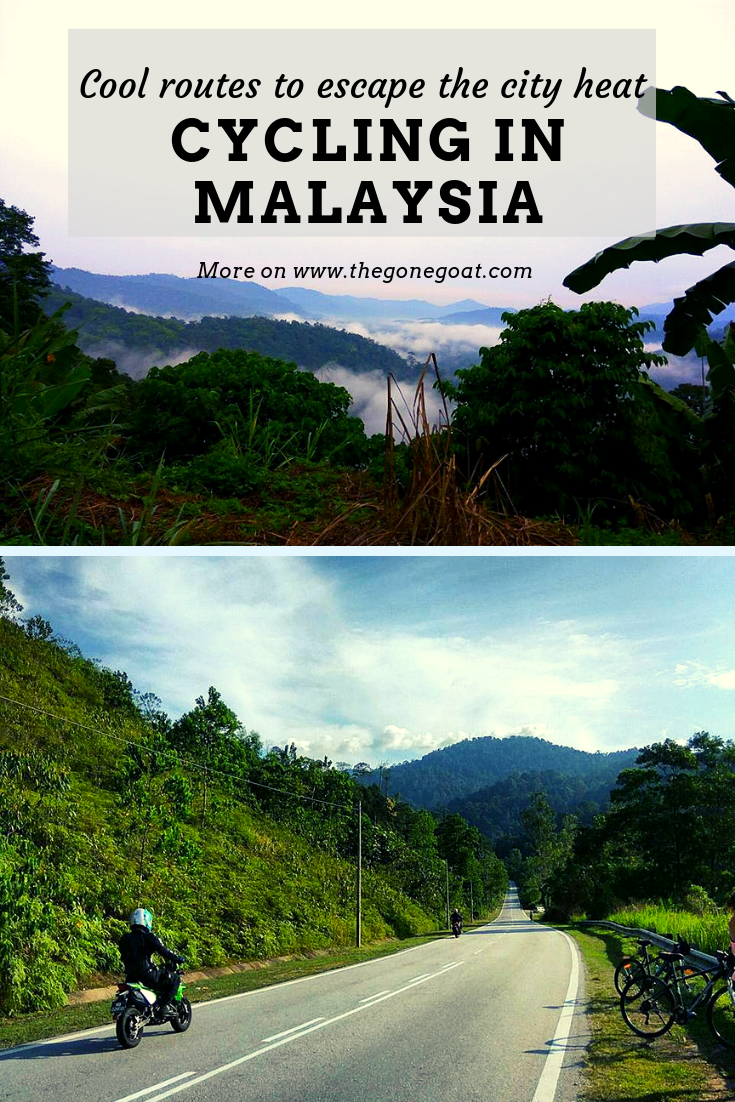 Here are the best cycling routes in Malaysia for a unique way to explore its forgotten towns, parks and colonial past. The parks don't count as it is not as fun as climbing pure stretches of asphalt and stopping every now and then to cool with a sweet cup of 'Teh Tarik' #CyclingAsia #Malaysia #TravelDestinations #Adventure #Travel #SoloDestinations #AsiaTravel #BicycleTouring #Outdoors #Cycling