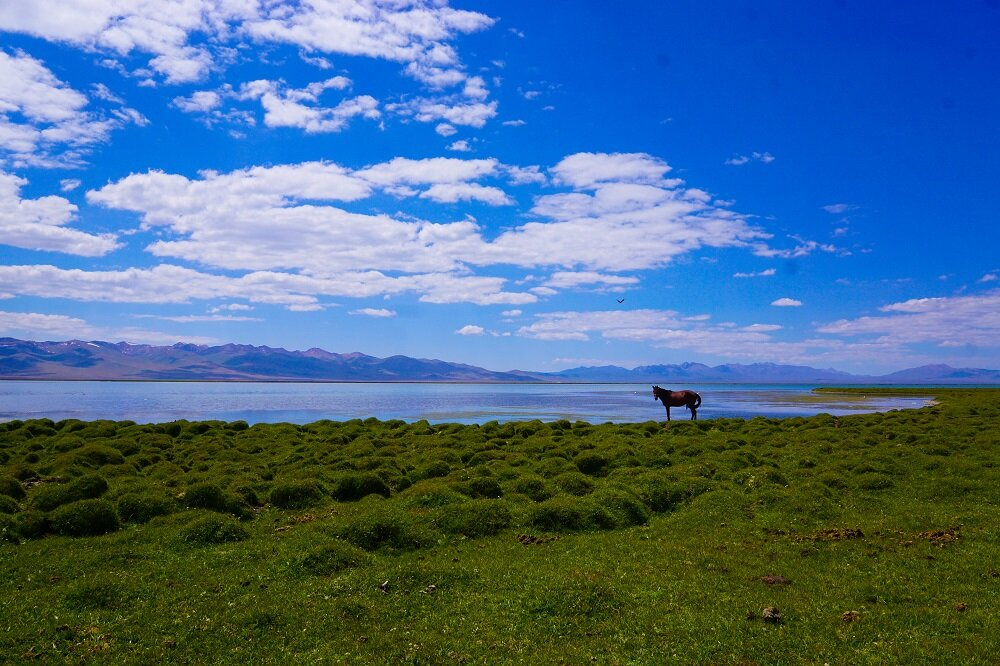 The beauty of remote landscapes in Kyrgyzstan. Shot in Song Kul lake.