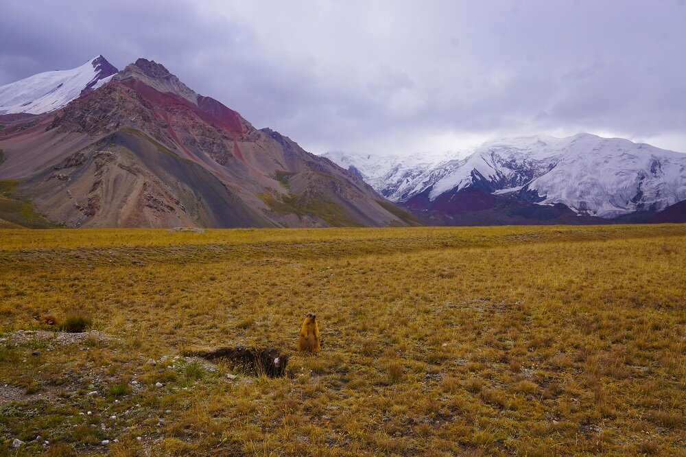 It was nice to trek independently and join others while hiking in Kyrgyzstan.