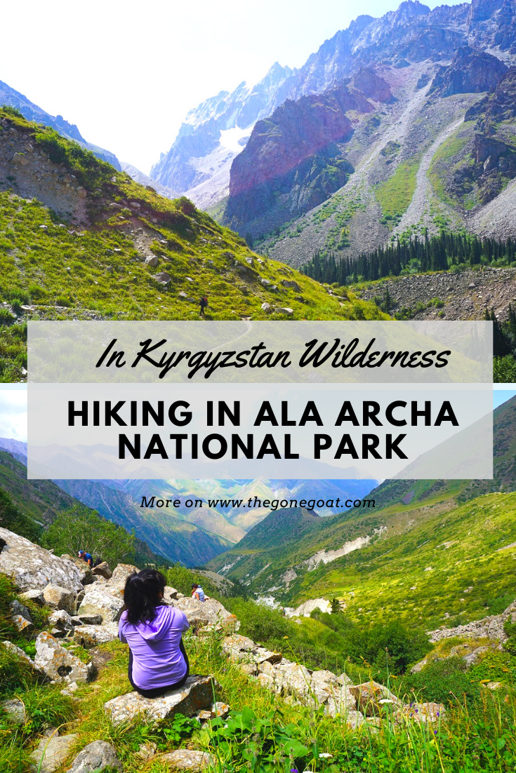 Here's what it is like to hike in Ala Archa National Park on a day trip from Bishkek or an extended one. We tottered along looking at the wonderful pine trees dotting the mountains of Kyrgyzstan as we climbed up graveled paths and glacier streams. #traveldestinations #hiking #centralasia #travelideas #kyrgyzstan #trekking #hikingideas #asia #travel #outdoors