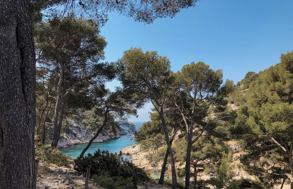 The trailhead for the Cassis Calanques hikes is located in the first inlet called Port-Miou.