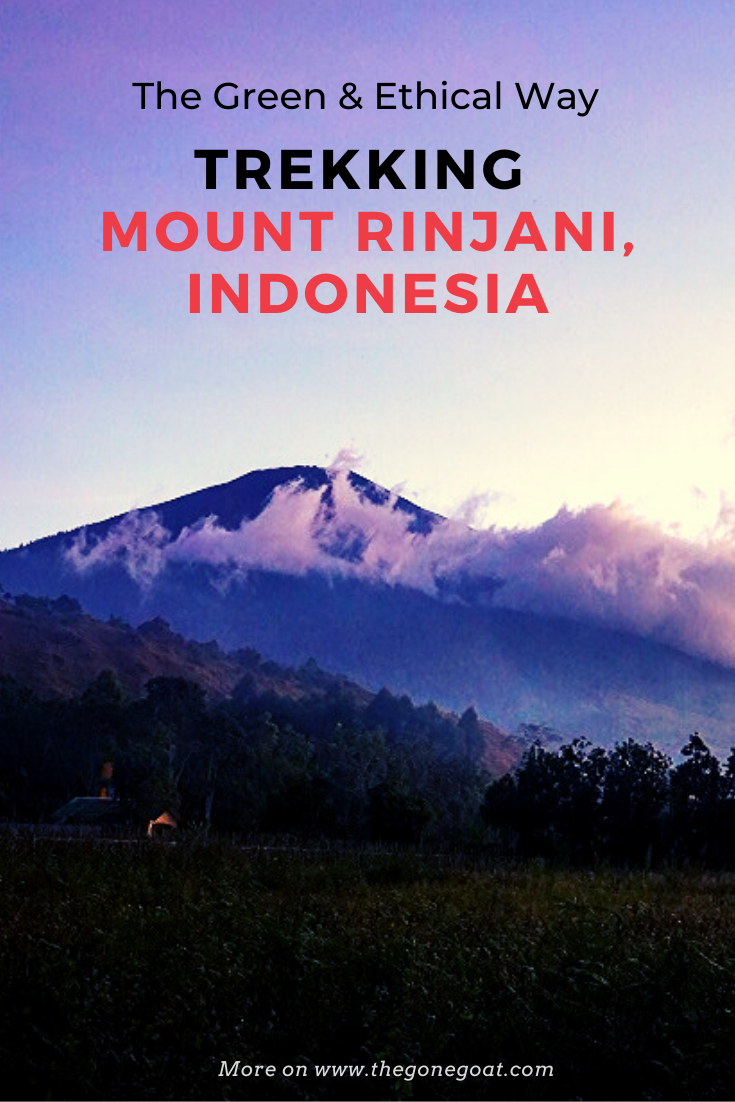 Trekking Mount Rinjani ethically was important after the earthquake and trash situation in Indonesia! Here's a travel guide on how my curiosity beckoned me to hike Mt. Rinjani, the second highest volcano in Indonesia despite its difficult terrain. #hikingtrails #indonesia #mountrinjani #asia #travelideas #traveldestinations #asiatravel #hikingasia #adventuretravel #volcanohiking