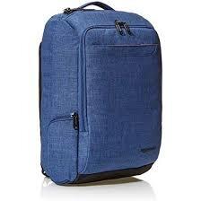 best-minimalist-travel-backpack-amazonbasics.jpg
