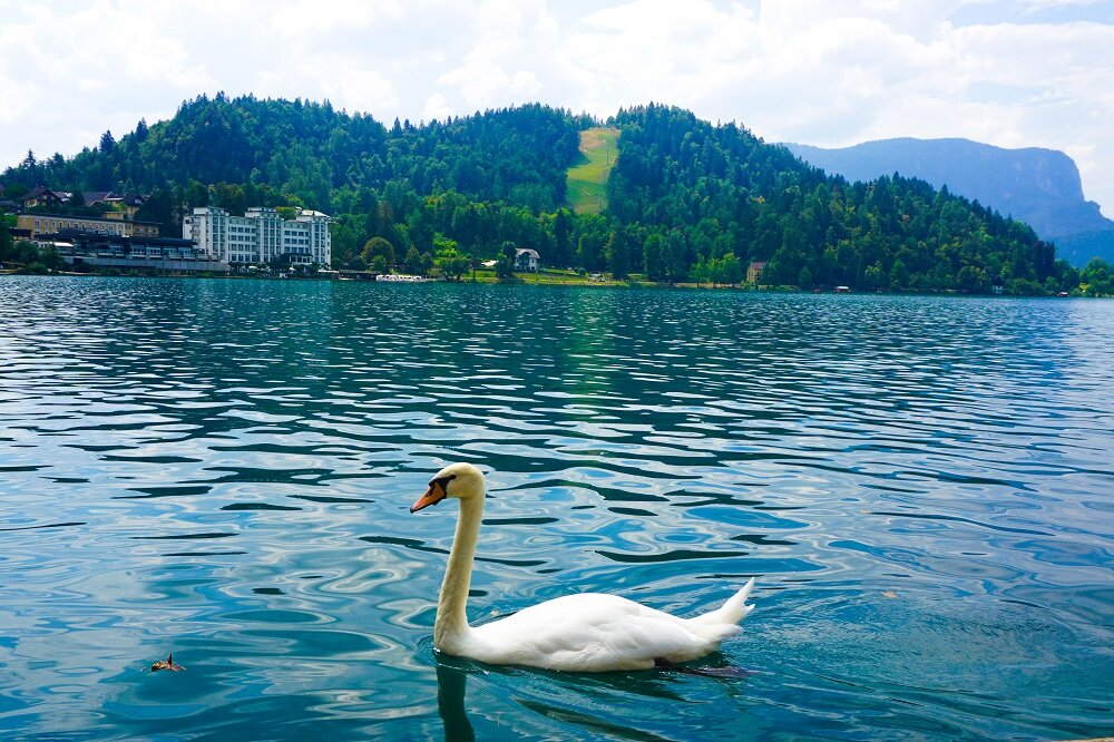 Imagine staying near the shores of lake bled