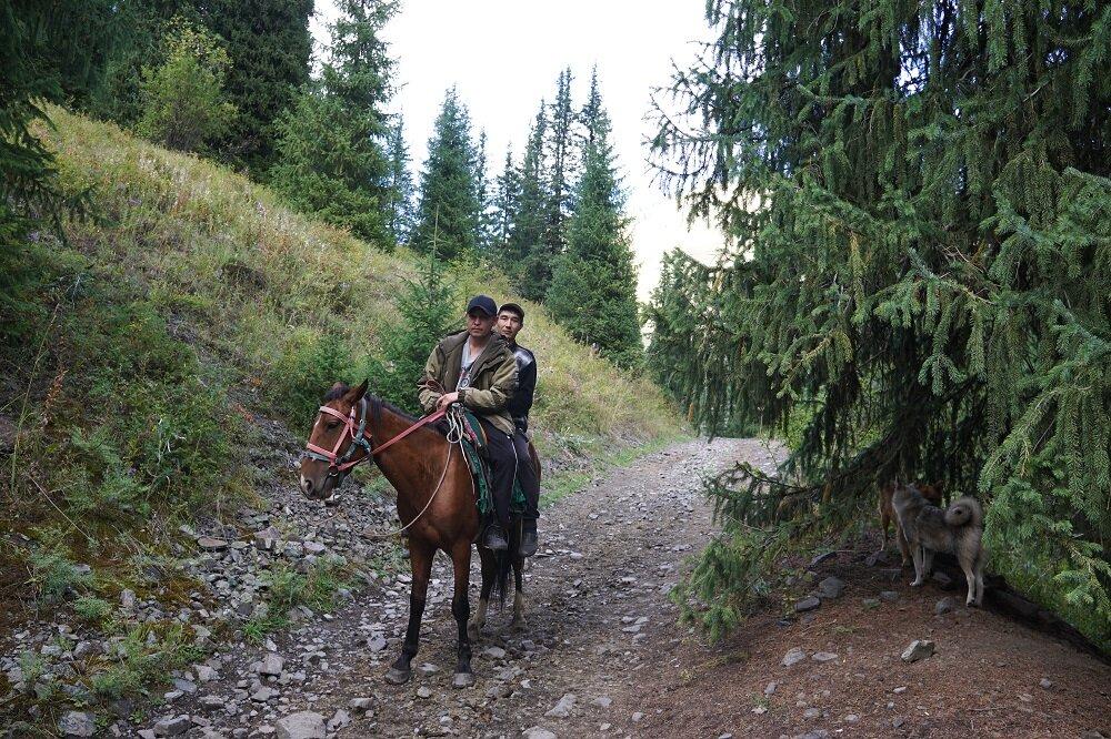 Sunken-Forest-Kazakhstan-Hiking.jpg