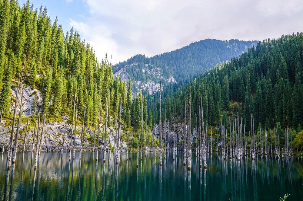 Kazakhstan-Sunken-Lake-Forest-Kaindy-Lake.jpg