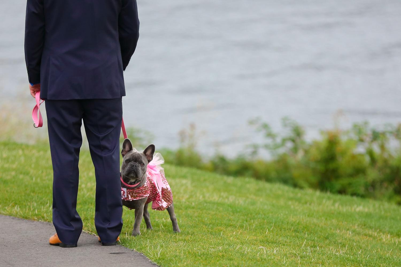 Wedding Waterways Cruises South Lake Union Seattle Washington 12.jpg