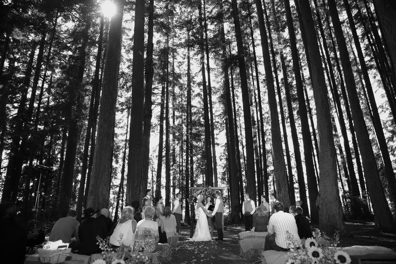 Wedding Photos Kitsap State Park Kitsap Washington19.jpg