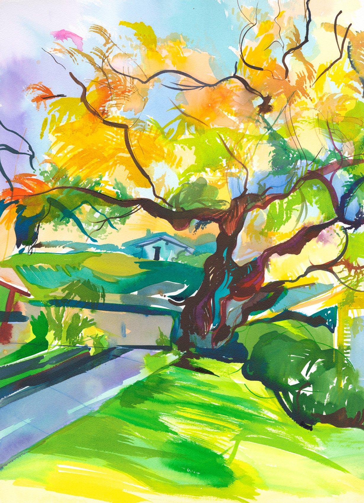 Big Tree at Lincourt