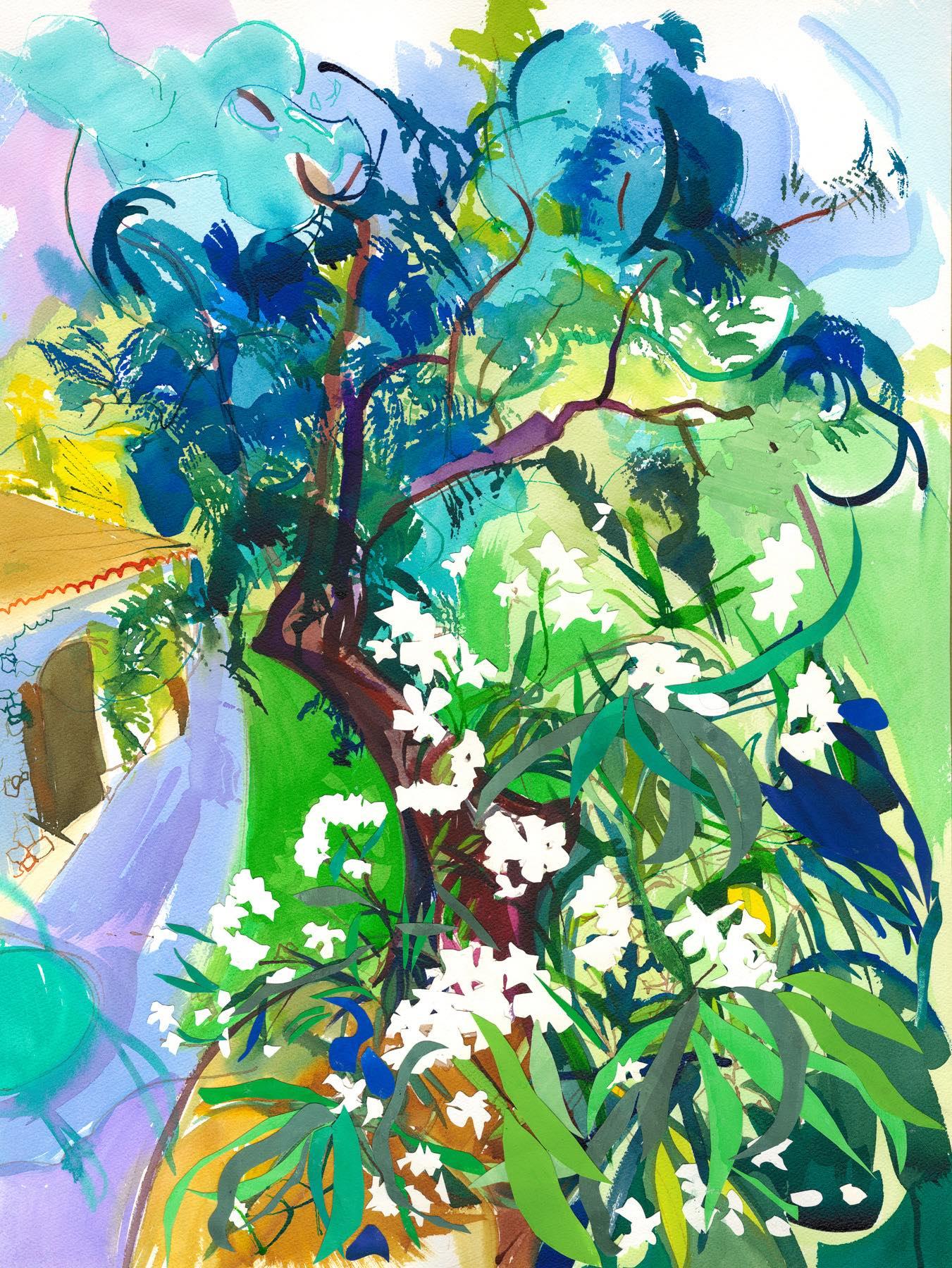 Oleander and Olive