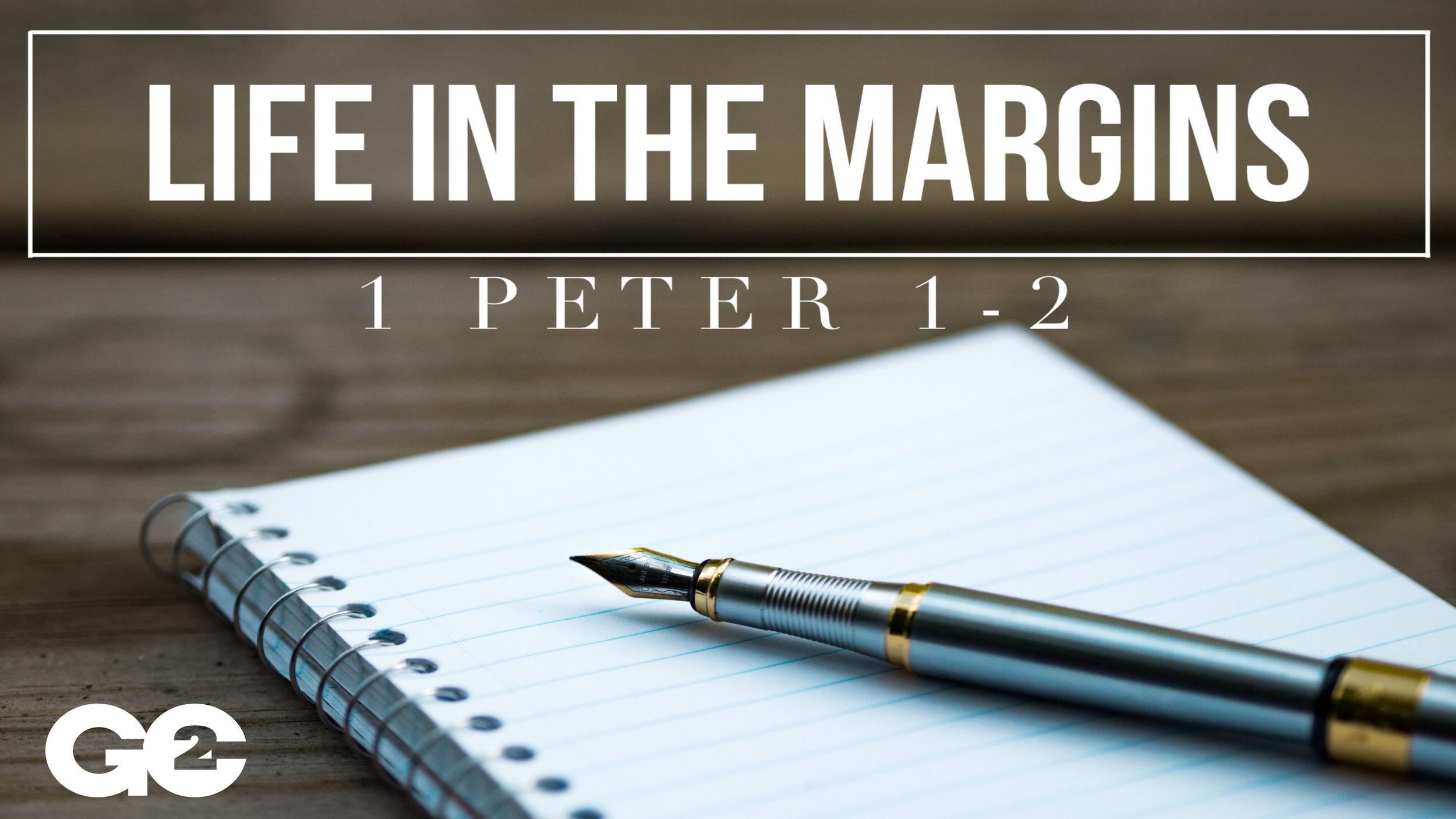 Life In The Margins.jpg