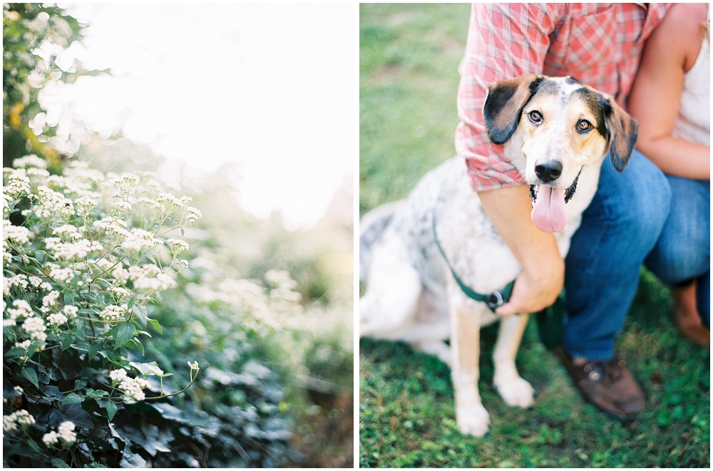 Engagement photos at Kuhs Estate with Dogs