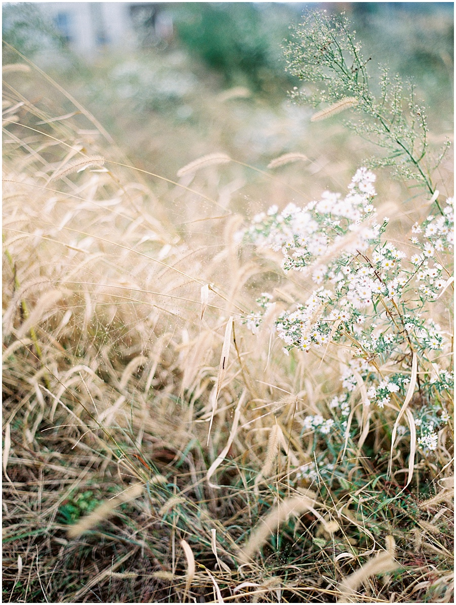 Springfield Missouri Outdoor Wedding Wedding Photos | Garden Photographer
