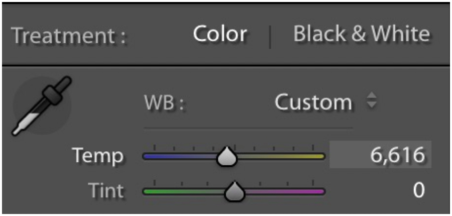 Get started with Lightroom Editing - Lr Temp and Tint Sliders