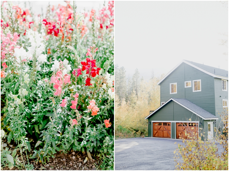 light and airy presets — brittley presets for lightroom