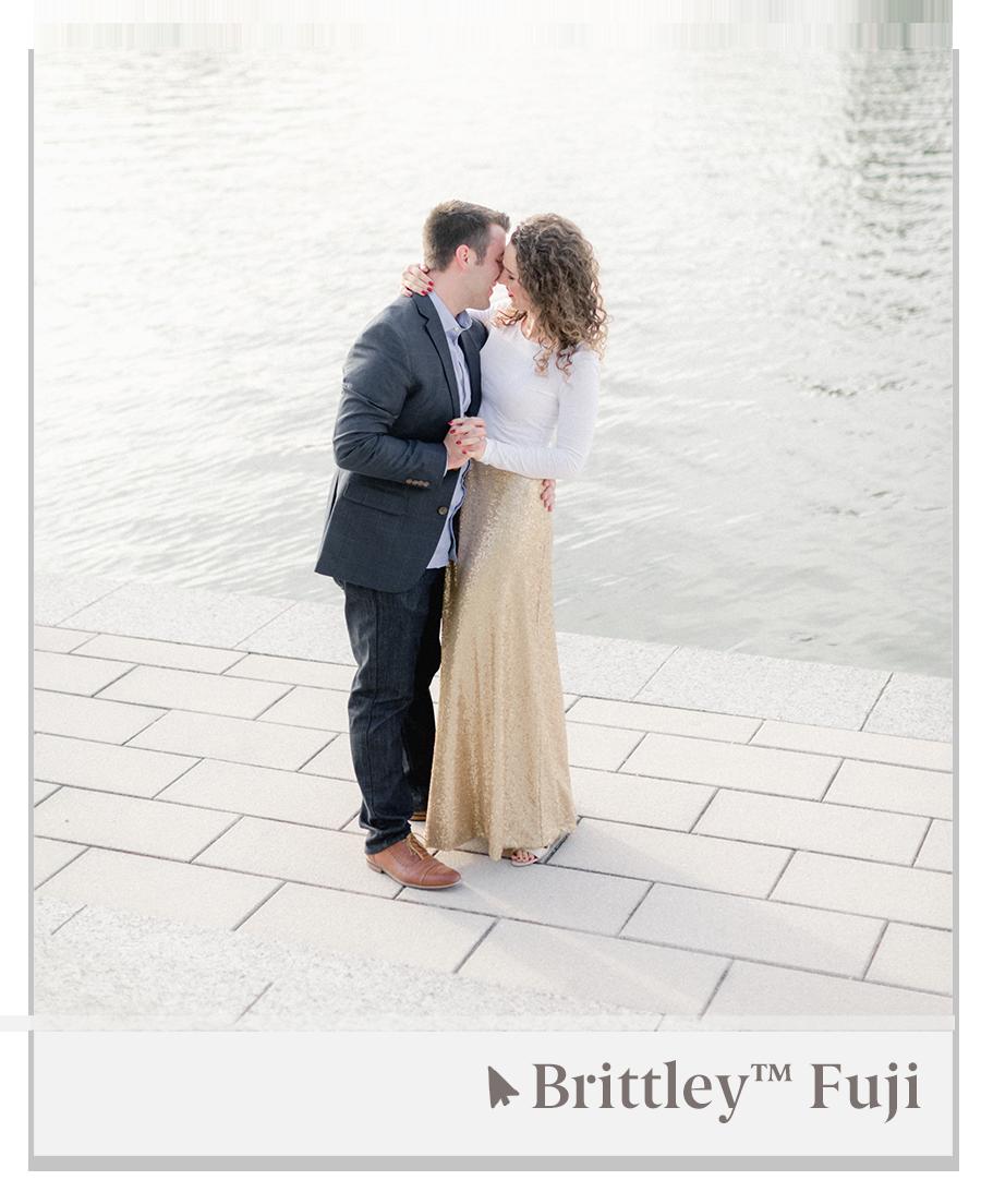 Brittley Fuji Pro Preset — Brittley Preset Suite 3.png