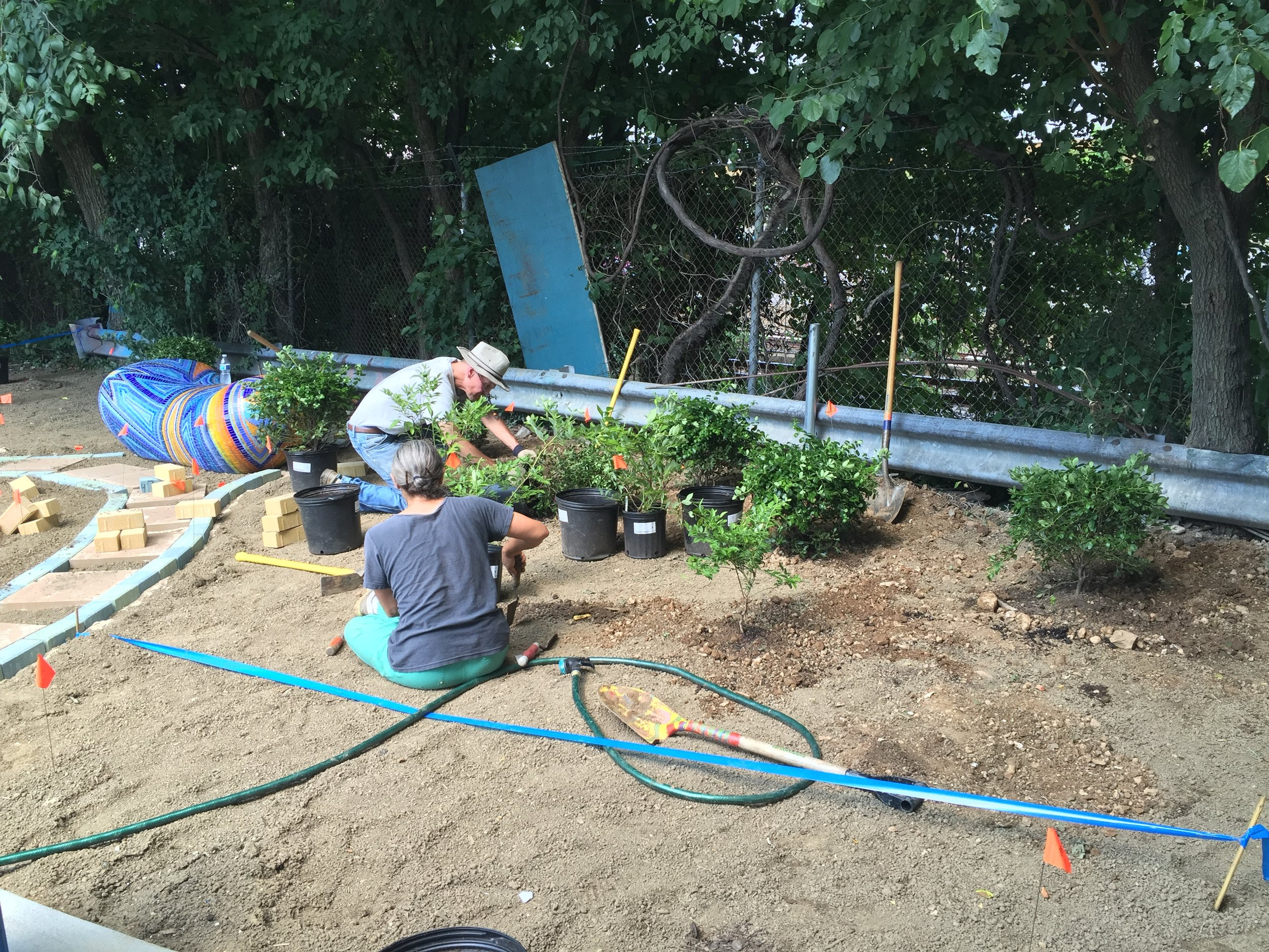 Dance Place's 8th Street Arts Park Native Plant Garden, funded by DOEE's Community Stormwater Solutions program. Image source: Dance Place.
