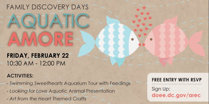 """The Department of Energy and the Environment's  Aquatic Resources Education Center  in Anacostia Park is celebrating Valentine's Day  Friday, February 22, 10:30 am-Noon  with Aquatic Amore.  The free event will feature a Swimming Sweethearts aquarium tour with feedings, Looking for Love aquatic animal presentation, and Art from the Heart themed crafts and activities. Come discover how aquatic animals communicate… and """"date""""!"""