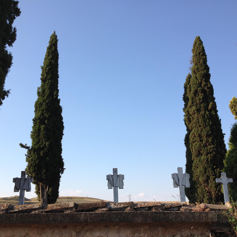 crosses & cypresses_above wall.JPG