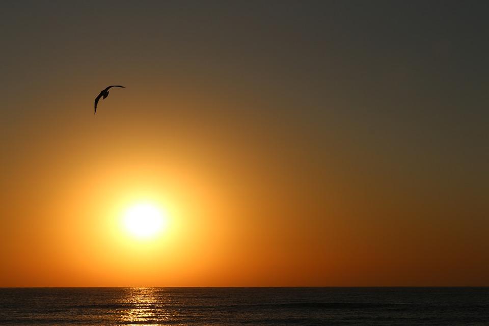sunrise-3039043_960_720.jpg
