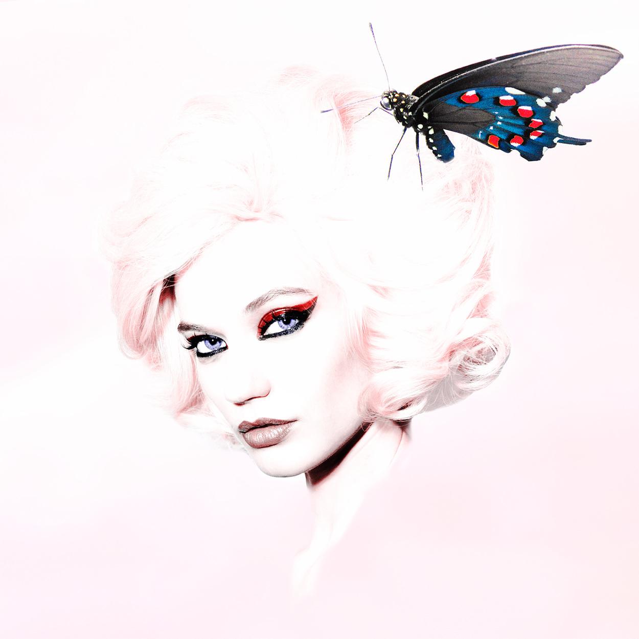 blondsButterflyFlat-copy_1250.jpg