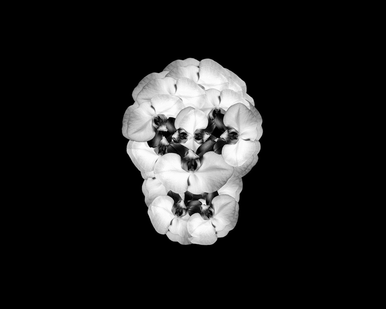 "Maritza De Quesada Skull Gelatin silver print 12"" x 9"" (available in other sizes)"