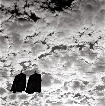 """ETERNAL SHIRTS   31.5"""" x 31.5""""  1977"""