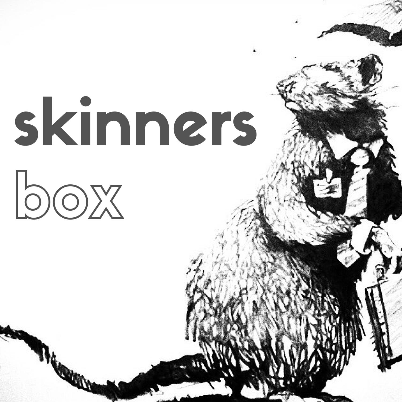 MER Skinners Box.png