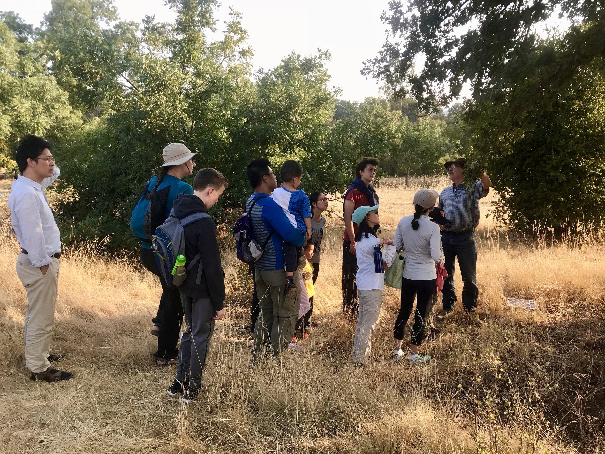Leading a hike at Pearson-Arastradero Preserve in Palo Alto