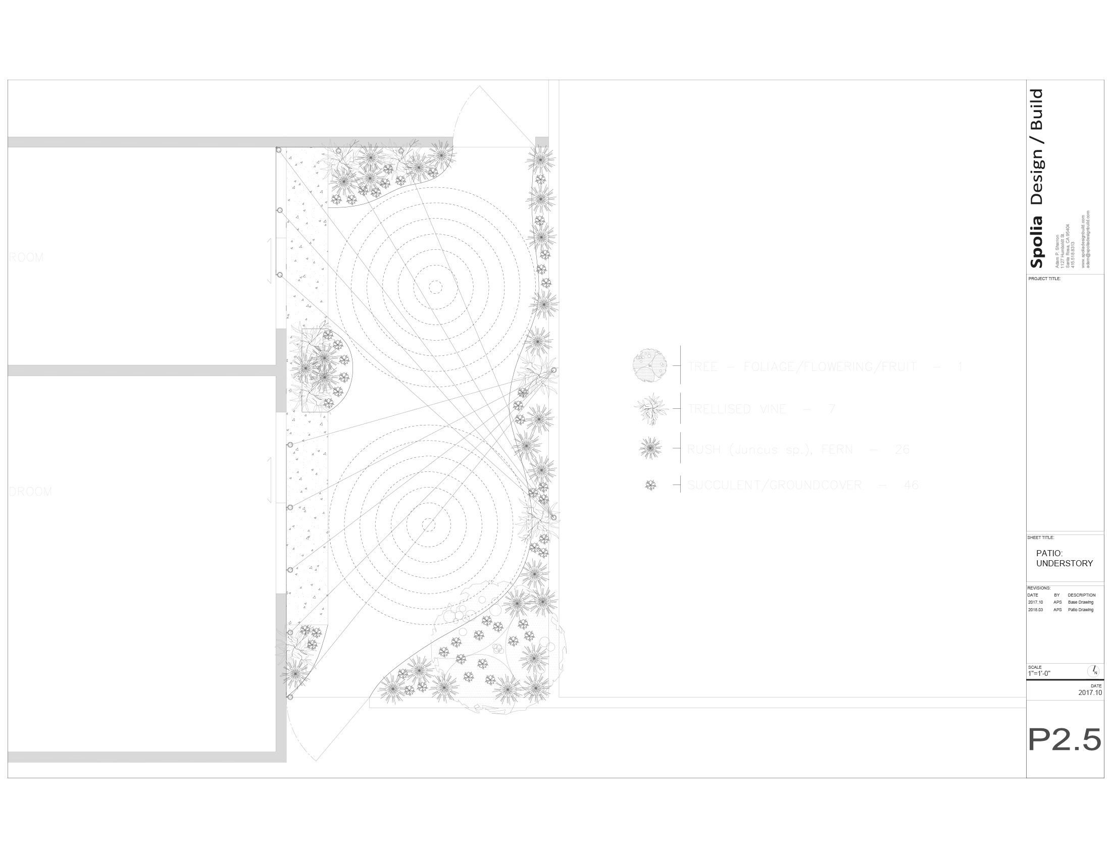 _Sharron_SpoliaDB_Portfolio_Mertens_Plan.jpg