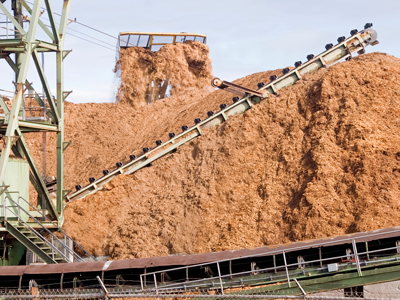 Forestry and Wood Processing Operations with the belt scale system