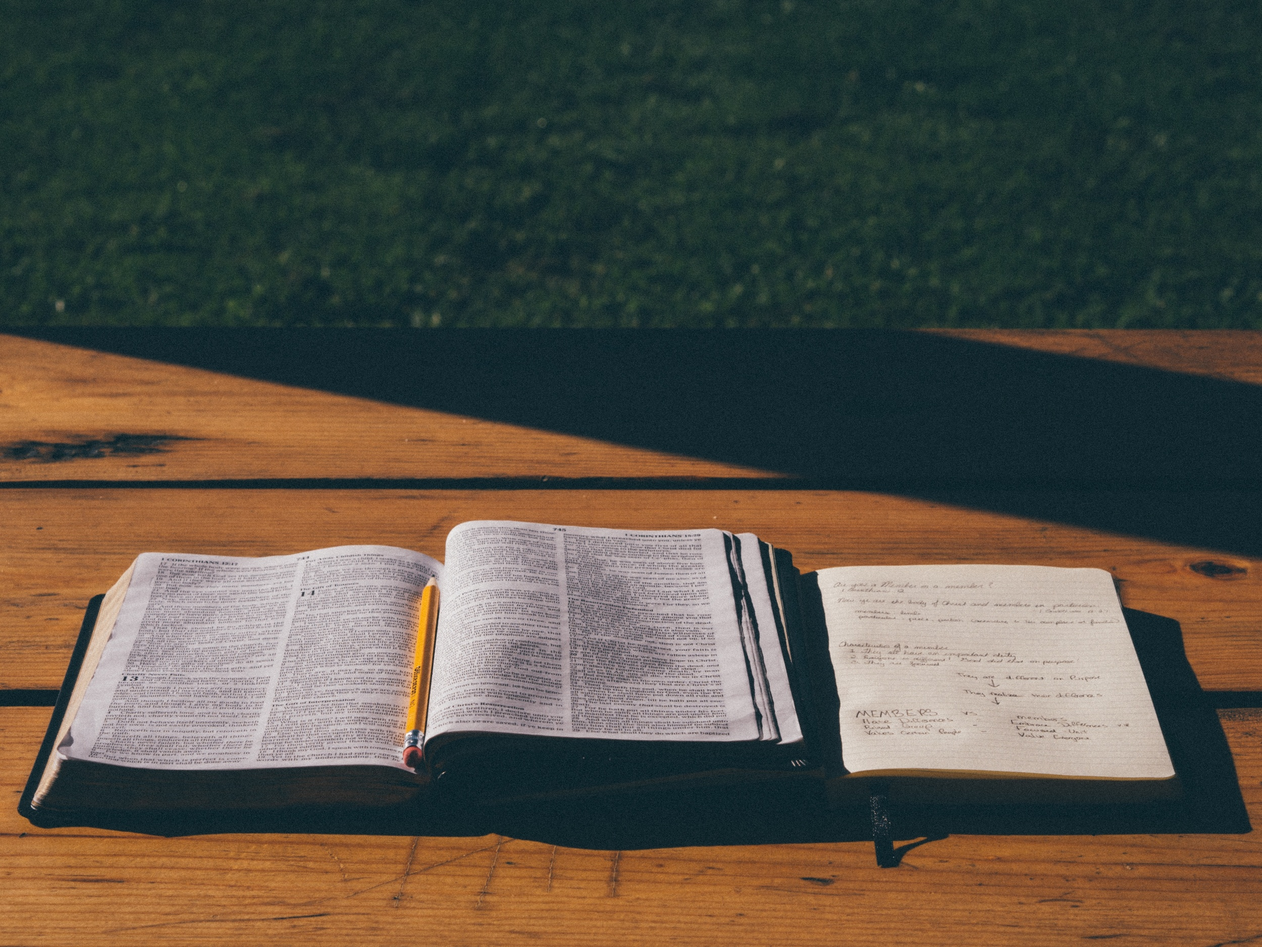 THE BIBLICAL COUNSELING COALITION -
