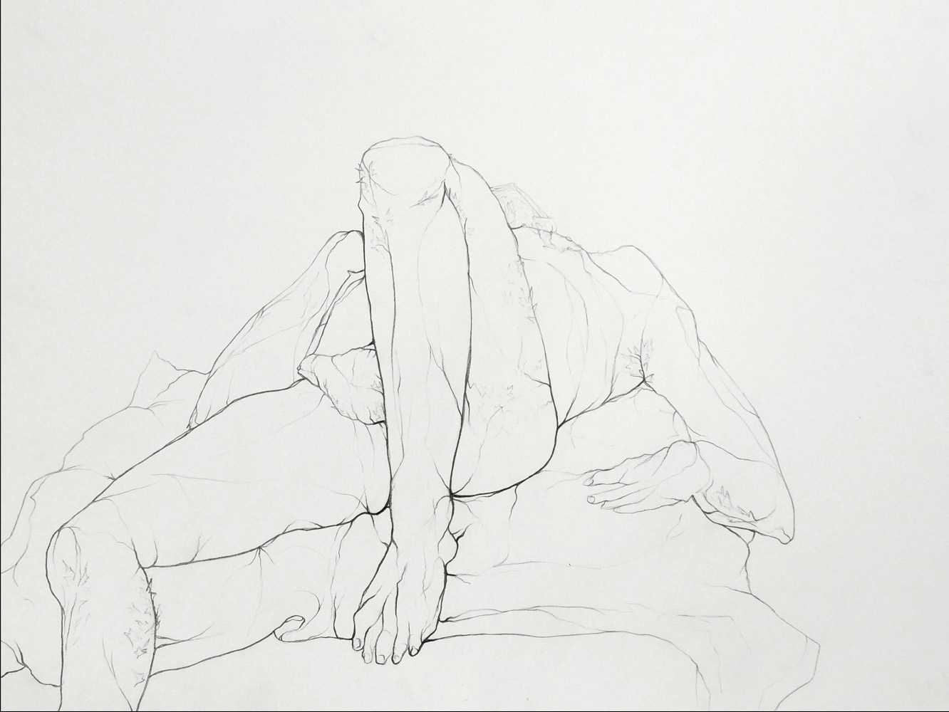 "Student: Sarah Meyer Project: ""Modulated Contour Line"" (Drawing II) Graphite 18""x24"""