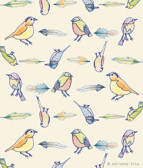 avita_birdspattern_sd.jpg