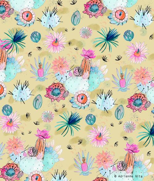 avita_cactusflowers_sd.jpg
