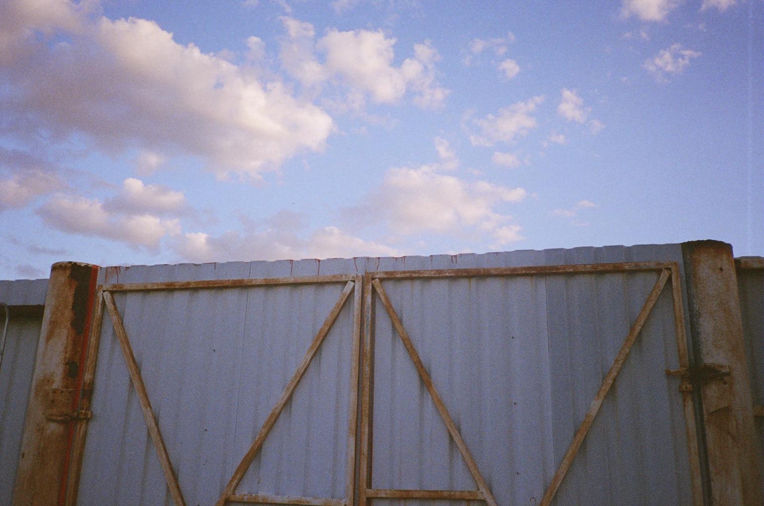 SHARKIVE_20100923.jpg