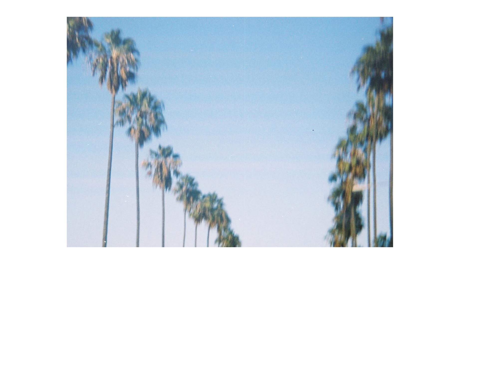 Screen Shot 2019-02-17 at 6.49.20 PM.png