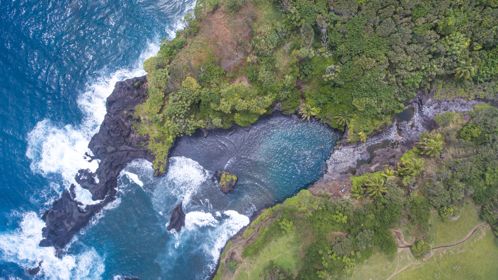 road-to-hana-tour-epic-eperience-maui-hawaii