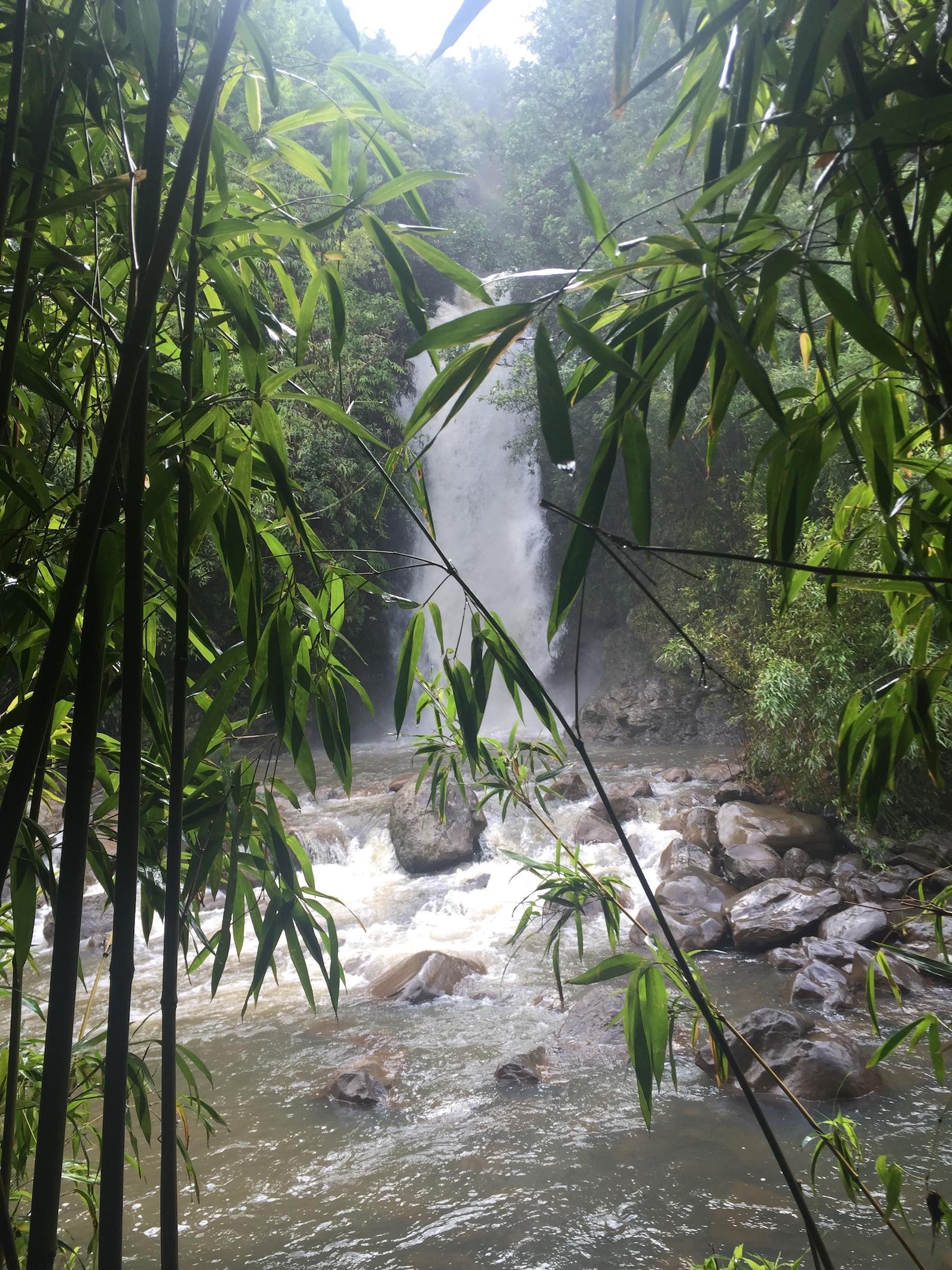 waterfall-hana-epic-experience-maui-tours