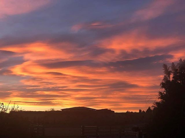 We're treated to the most amazing sunrises and sunsets at this time of year. 📸❤️ : @revelationnzalpacastud