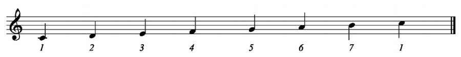 Above is the major scale in the key of C. Each note is assigned a number or scale degree, thus there are 7 different notes in this scale.