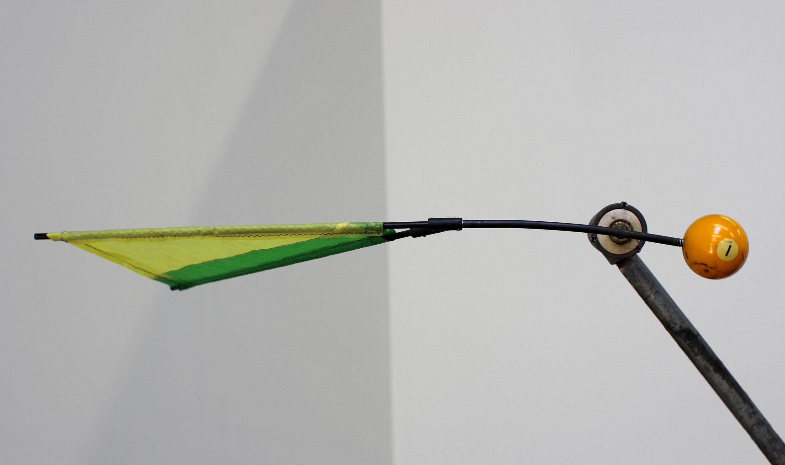 Cassowary.BallDetail.jpg