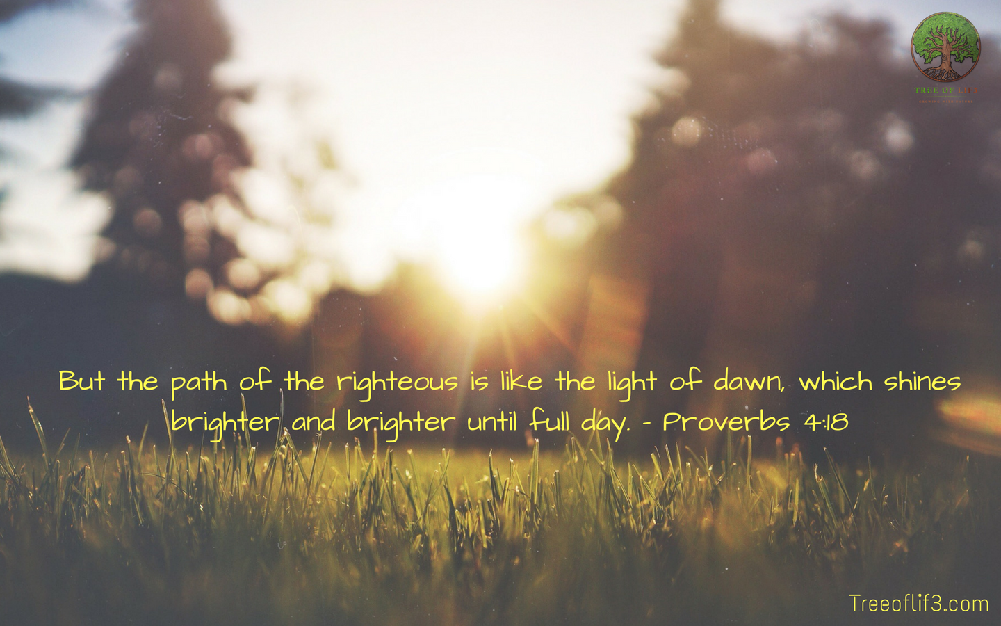 But the path of the righteous is like the light of dawn, which shines brighter and brighter until full day - Proverbs 4:18