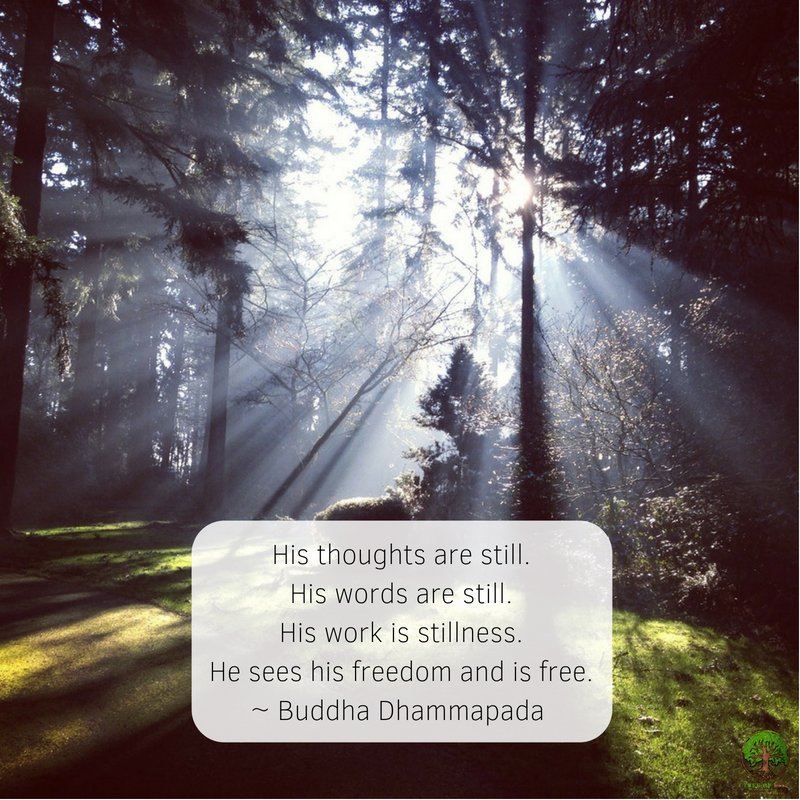 His thoughts are still. His words are still. His work is stillness. He sees his freedom and is free. .1.png