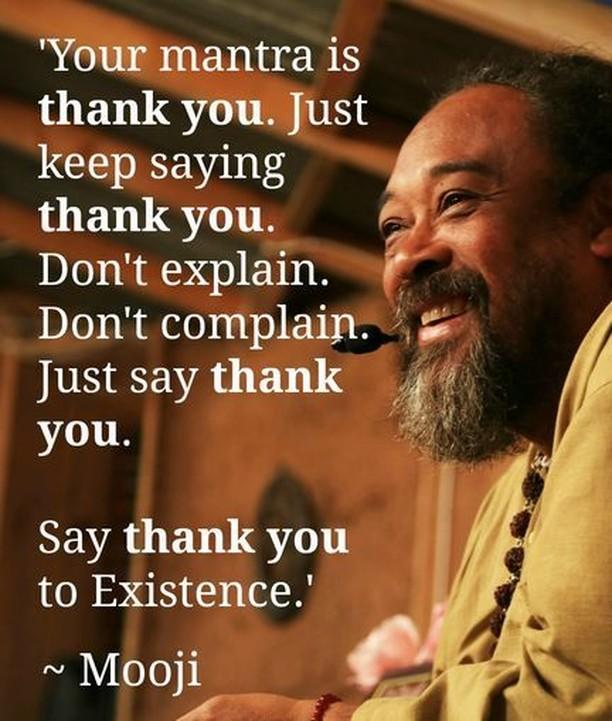 Thank yah! -  #mooji #moojibaba #thankyou #thankyah #gratitude