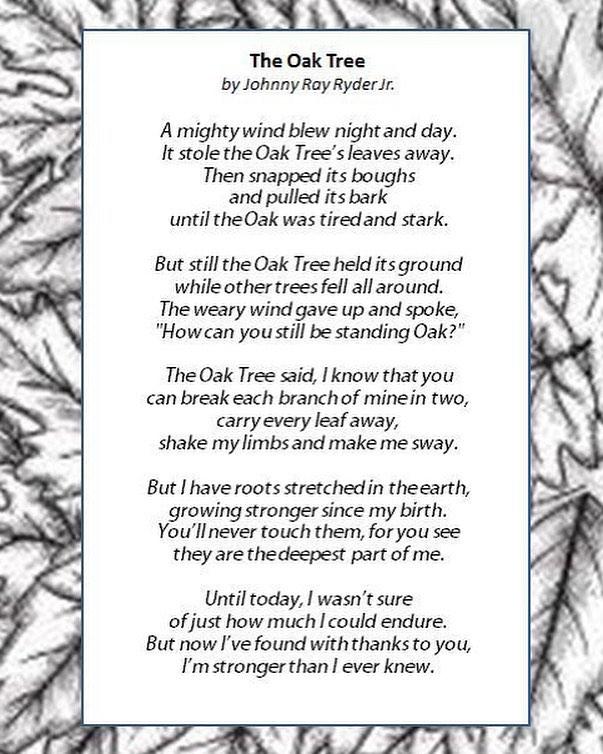 The Oak Tree 🌳 🌱💙🙏🏼💪🏼 -⠀ -⠀ -⠀ #Poem #poetry #Nature #Trees #Themightyoak #Strength #Naturelovers #Quoteoftheday #poem #love #Treeoflif3 #Treeoflife #Lifeisgood #Getbacktonature #mammanature #Wisdom #Selfawareness #Meditation #yoga #Yogi #poetrycommunity #poems #oaktree #oaktrees #vibetribe