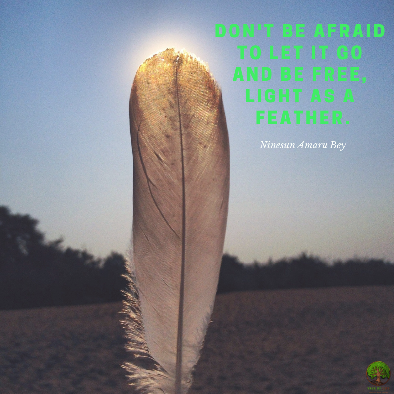 Don't be afraid to let it go and be free, light as a feather..png