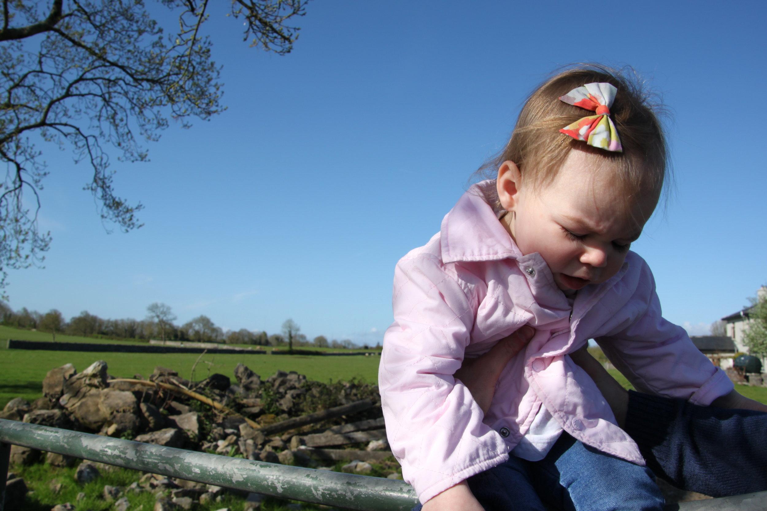 at-the-farm-in-ireland.jpg