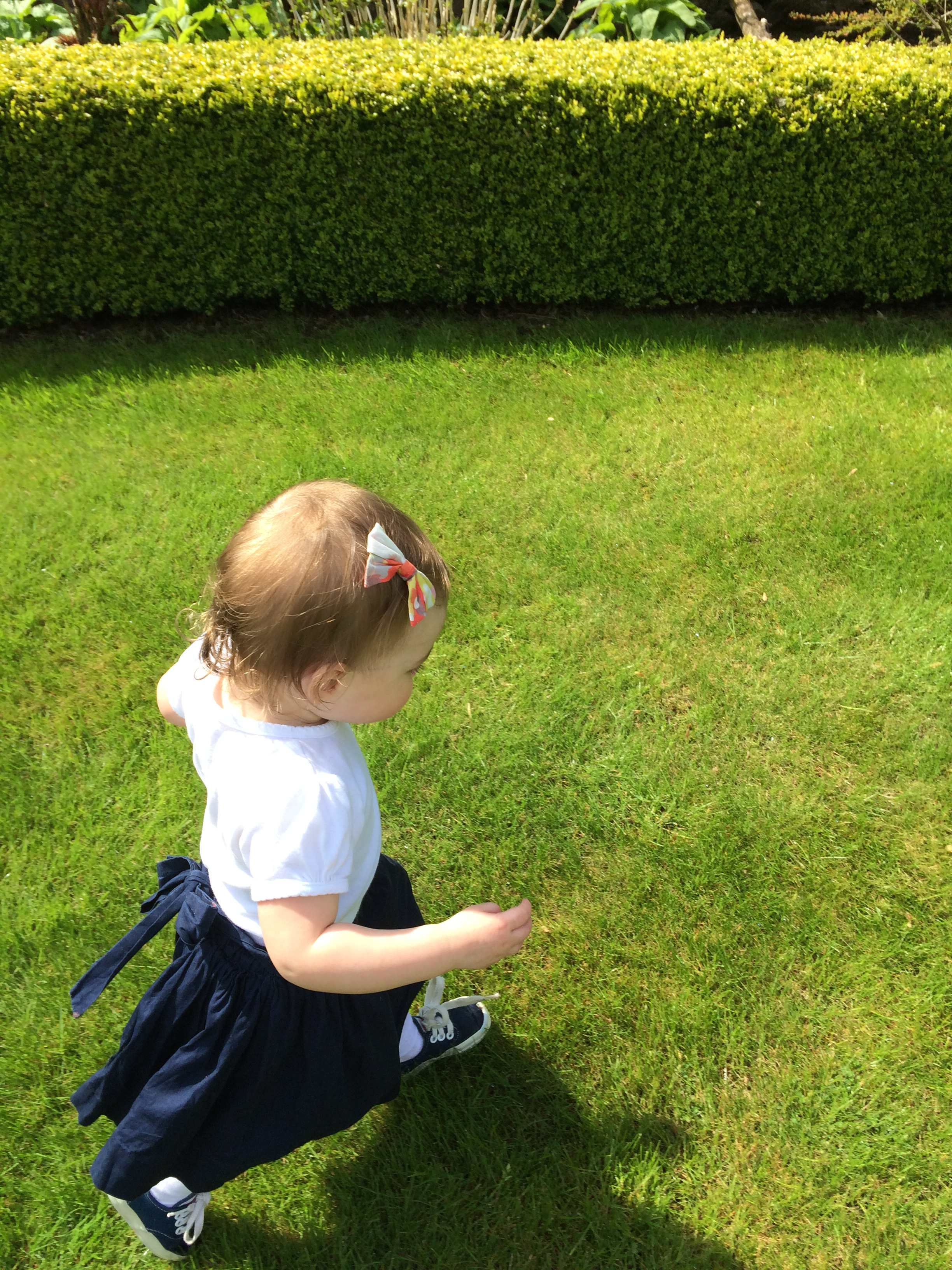 irish-green-grass-run.jpg